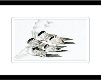 Canada Goose Watercolor - Five Brothers