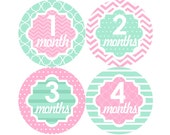 Baby Monthly Stickers FREE Baby Month Milestone Sticker Baby Month Stickers Baby Girl Bodysuit Stickers Photo Props Chevron Mint Pink 141G