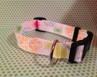 "1"" wide Fireworks Dog Collar"