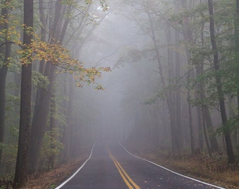 Foggy Road Through The Woods - West Virginia - Nature - Photographic Print