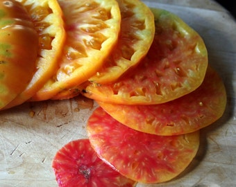 40+ Hillbilly (Flame) Heirloom Organic Tomato Seeds