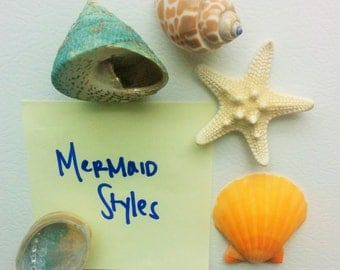 Beach Decor Starfish Shell Magnets, Seashell Magnets, Nautical Decor - 5 PC Refrigerator Magnets