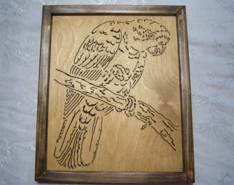 Framed Scroll Saw Parrot picture
