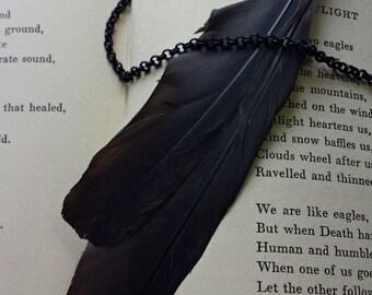 Avian - African Grey Feather Specimen Necklace