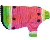 Skippy's Fantastic Watermelon Dog Sweater