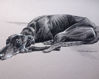 CUSTOM ONLY - Pencil Pet Portrait drawn from your favorite photograph.