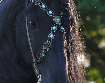 Show Bridle-Baroque Bridle turquoise black leather