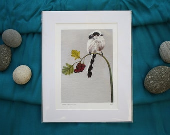 Long-tailed tit print from original acrylic painting