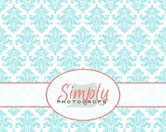 BABY BLUE DAMASK Vinyl Photography Backdrop