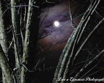Through a Tree (Landscape, Nature, Moon, Fine Art Photography)