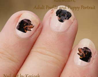 Rottweiler Nail Art,  Dog Nail Art Stickers, Rottweiler Nail Stickers, Fingernail Stickers, adult puppy profile portrait, decals