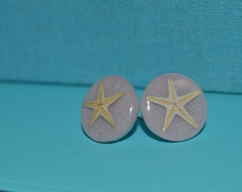 Real Sea Starfish on Shimmering Light Purple Back Earrings Studs Jewelry