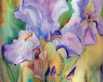 Four pack of Iris note cards.  Blank inside.  4.5x5 card stock with envelopes.