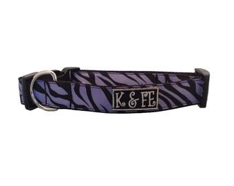 Purple Zebra Buckle Dog Collar