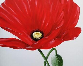 Large Poppy Wall Art Original - acrylic on canvas 50 x 50cm