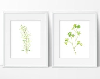 Kitchen Herb Prints - Set of 2 - Watercolor Art Print - Kitchen Decor - Modern Watercolor Rosemary and Parsley - Various Sizes