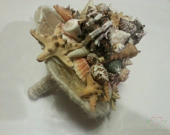 Materials Shells and starfish seashell starfish for flower arranging, natural decorations and shells painting shells bouquet