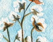 ACEO watercolor of cotton boll. Cotton Painting, Small Botanical Art,  watercolors paintings original, cotton boll painting