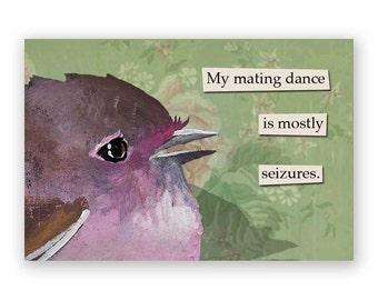 Mating Dance Magnet - Humor - Bird - Animal - Gift - Nature - Stocking Stuffer