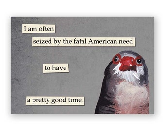 Fatal American Need Magnet - Bird - Humor - Mincing Mockingbird - Gift - Stocking Stuffer