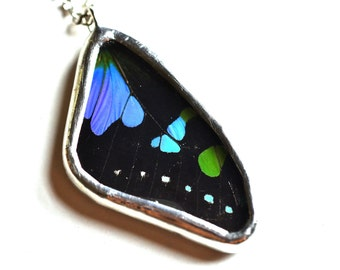 Real Butterfly Wing Necklace. Real Butterfly Wing Pendant. Butterfly Jewelry. Graphium weiskei. Silver Butterfly Necklace. Gift for her.