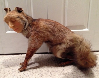 SALE SALE SALE - Vintage Taxidermy Fox Mount with Wax Face - 1