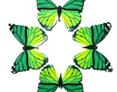 24 Green Monarch Butterfly Paper Embellishment For diy wedding, diy butterfly school kit, butterfly cupcake topper, butterfly prop, DIY ACEO