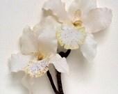 Medium White Orchid Hair Clip