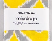 SALE 2 MINI charm pack MIXOLOGIE Moda Fabric by Studio M