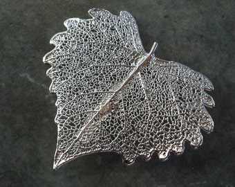 Sale - Free US Shipping - Real Leaf Brooch/Pin and Pendant - Sterling Silver - Cottonwood