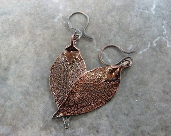Sale - Free US Shipping - Real Leaf Earrings - Oxidized Sterling Silver - Evergreen