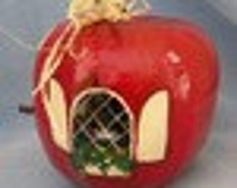 Apple Red Hand Painted Bird House Gourd