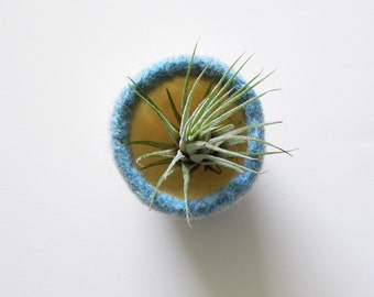 tiny felted dish - white, sky blue, and beige wool bowl - air plant planter - ring dish - jewelry bowl - scratch free