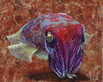 Colorful Cuttlefish Collage
