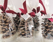 25 Pine Cone Fire Starter Christmas Party Favors, Holiday Party Hostess Gifts, Company Christmas Party Favors Personalized by Nature Favors