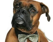 upcycled fashion, pet clothing, pet accessories, dog collar cuffs and bow tie