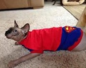 Superhero shirt for cats. Costume for sphynx and other cats