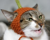 Pumpkin Cat Hat in Spice || READY TO SHIP