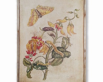Hand painted botanical painting on aged canvas