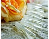 9 Vials Of Floral Romance: The Secret Garden Collection - Natural Perfume Oil in Dapper Parchment Envelopes - Pixxxie Pie's Floral Sampler