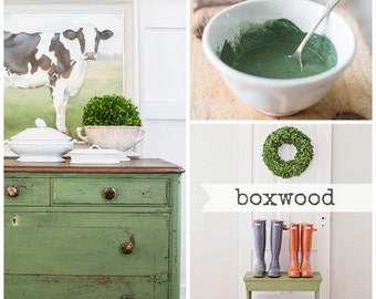 Miss Mustard Seed Milk Paint - Boxwood from Emily Rose Vintage Glasgow