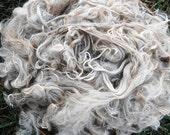 Suri Alpaca Fiber, 8.5 Inches, White, 2 Ounces, Serenity