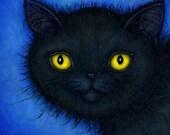 Black Exotic Shorthair Cat art original oil painting by Heidi Shaulis. Susu