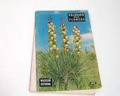 Colorado Wild Flowers By Harold And Rhonda Roberts
