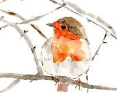 Robin art Print, Robin on a branch print, Print of watercolor, Robin watercolor, Birds art, nursery decor, holiday art, wildlife art