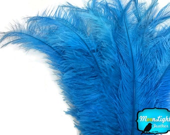 "Ostrich Feathers, 10 pieces - 20-28"" BLUE Ostrich Spads Large Feathers : 3679"