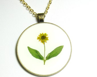 Sincerely Sunflower, Pressed Flower Pendant, Real Flowers, Pressed Flower Jewelry,  (1521)