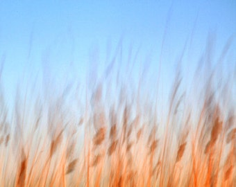 Abstract Nature Photography, Blue, Orange, Sunset, Modern Art, 8X10 Mat, Ready to Frame