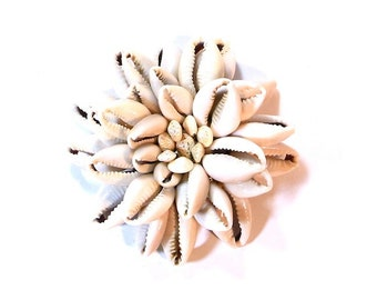 Large Cowrie Shell Pin