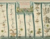 Oxford to Bristol, Oxford to Cambridge, 1939 Ribbon Map 79-80 Kingdom of England, Wales, John Ogilby 1675, Library Office Decor